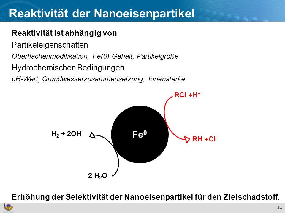 Reaktivität der Nanoeisenpartikel