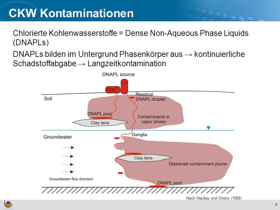 CKW Kontaminationen Chlorierte Kohlenwasserstoffe = Dense Non-Aqueous Phase Liquids (DNAPLs)