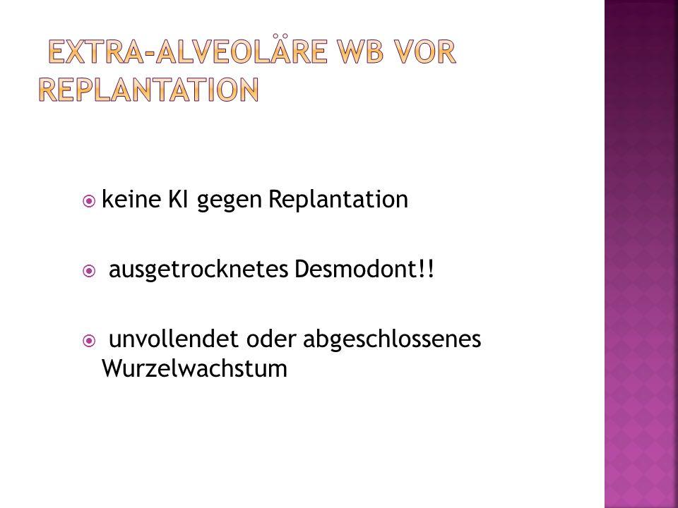 extra-alveoläre WB vor Replantation