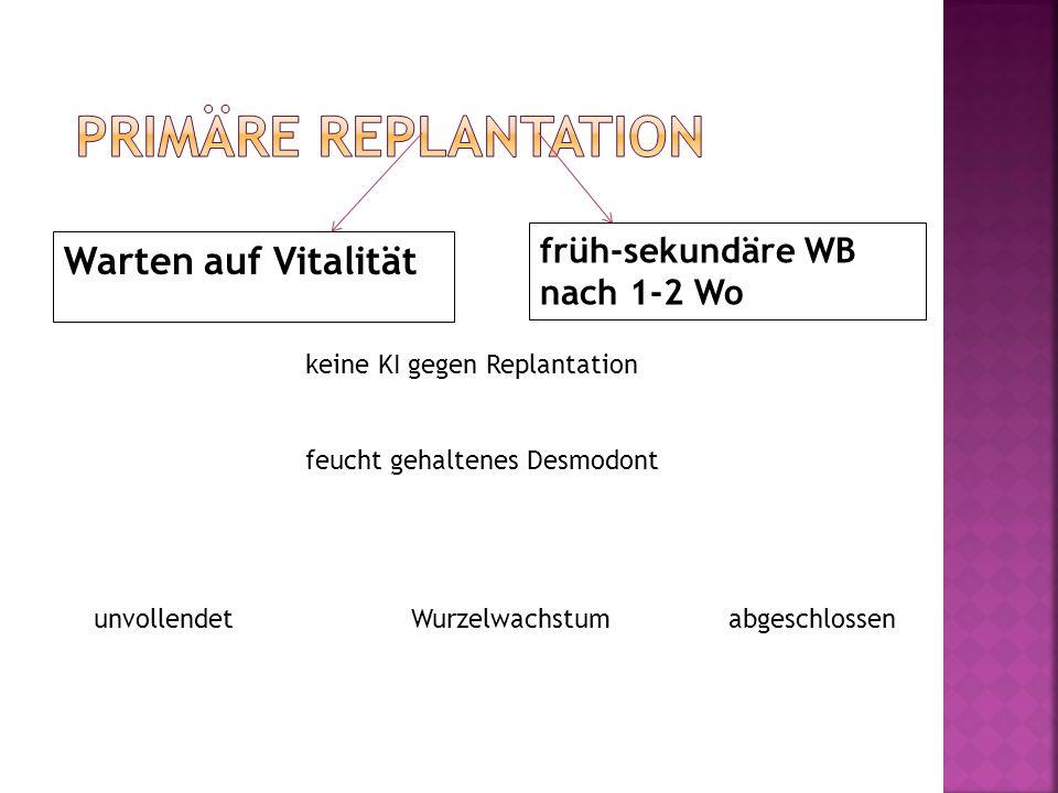 primäre Replantation Warten auf Vitalität früh-sekundäre WB