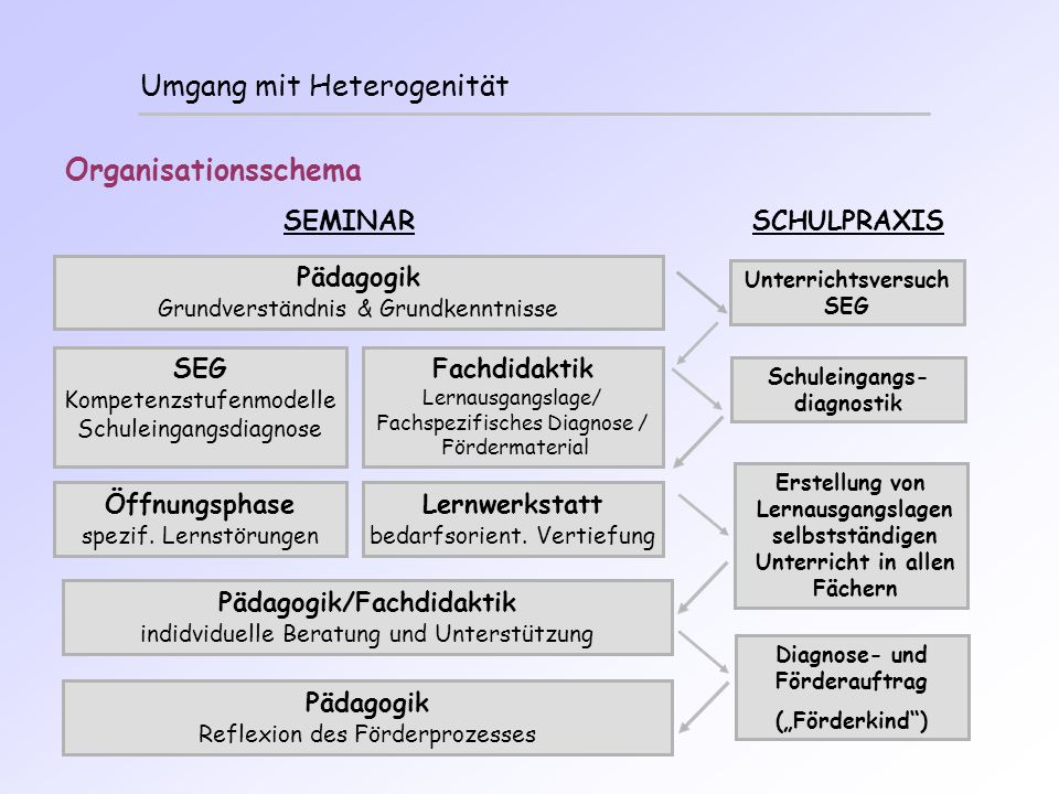 Unterrichtsversuch SEG Schuleingangs-diagnostik