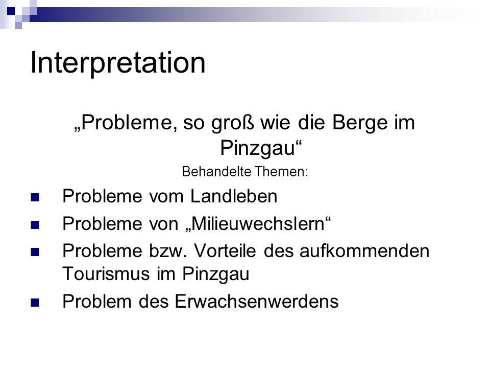 """""""Probleme, so groß wie die Berge im Pinzgau"""