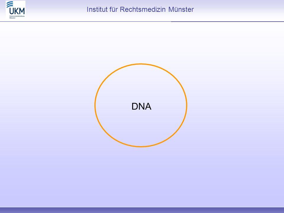 Institut für Rechtsmedizin Münster