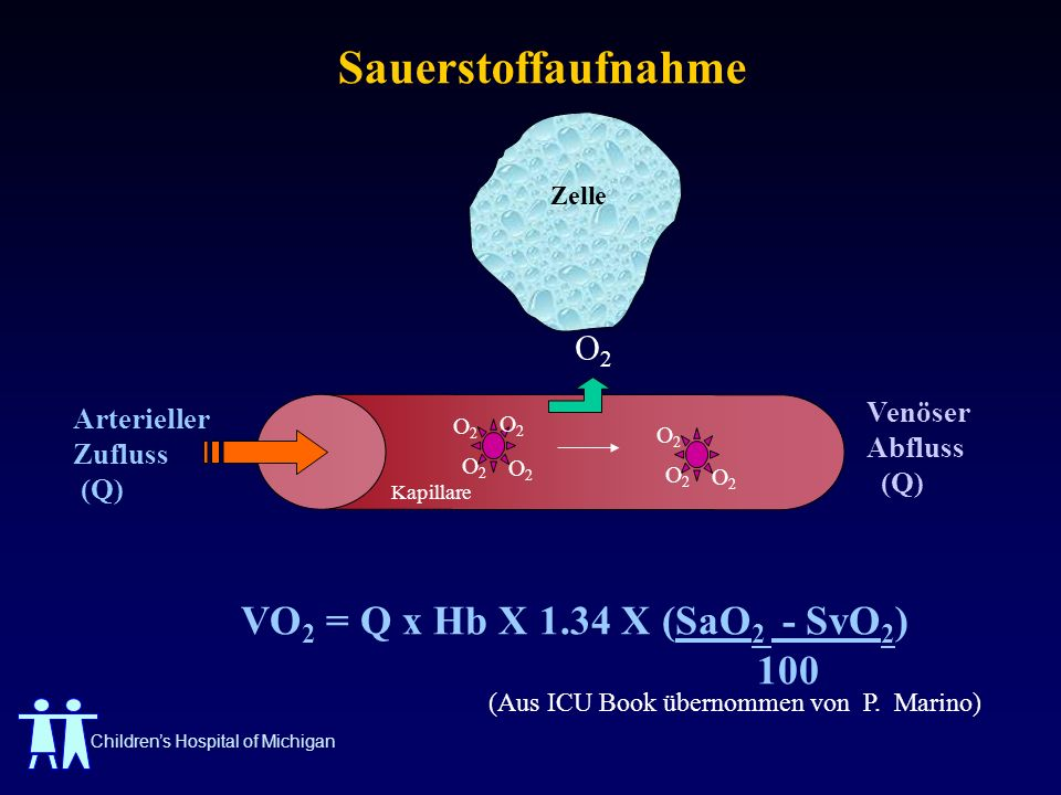 Sauerstoffaufnahme VO2 = Q x Hb X 1.34 X (SaO2 - SvO2) 100 Venöser