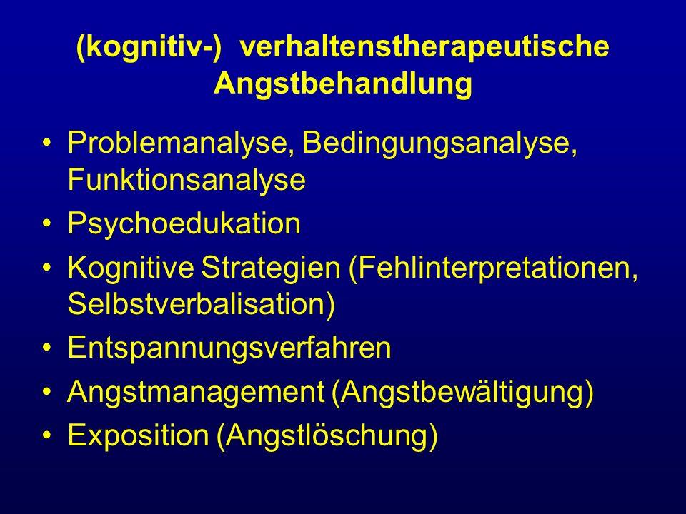 (kognitiv-) verhaltenstherapeutische Angstbehandlung