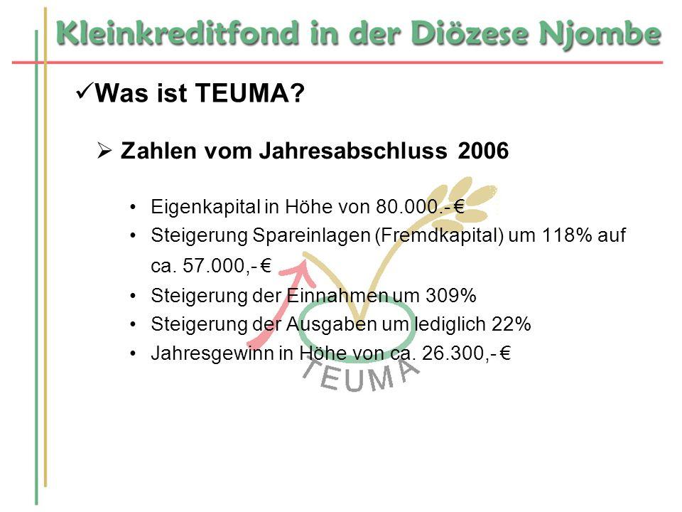 Was ist TEUMA Zahlen vom Jahresabschluss 2006