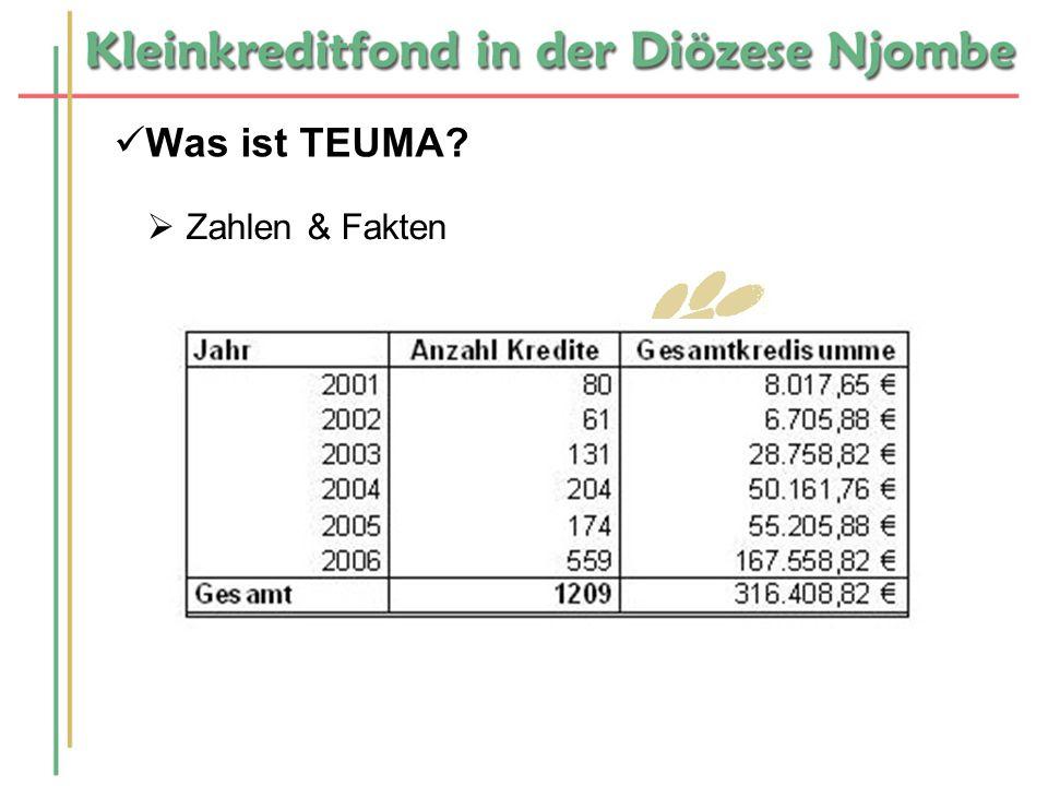 Was ist TEUMA Zahlen & Fakten