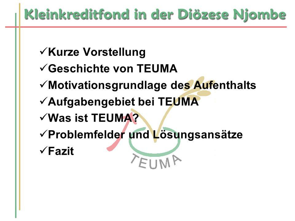 Kurze Vorstellung Geschichte von TEUMA. Motivationsgrundlage des Aufenthalts. Aufgabengebiet bei TEUMA.