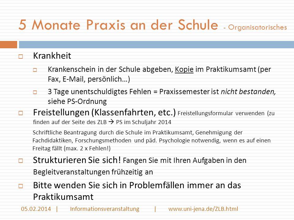 5 Monate Praxis an der Schule - Organisatorisches