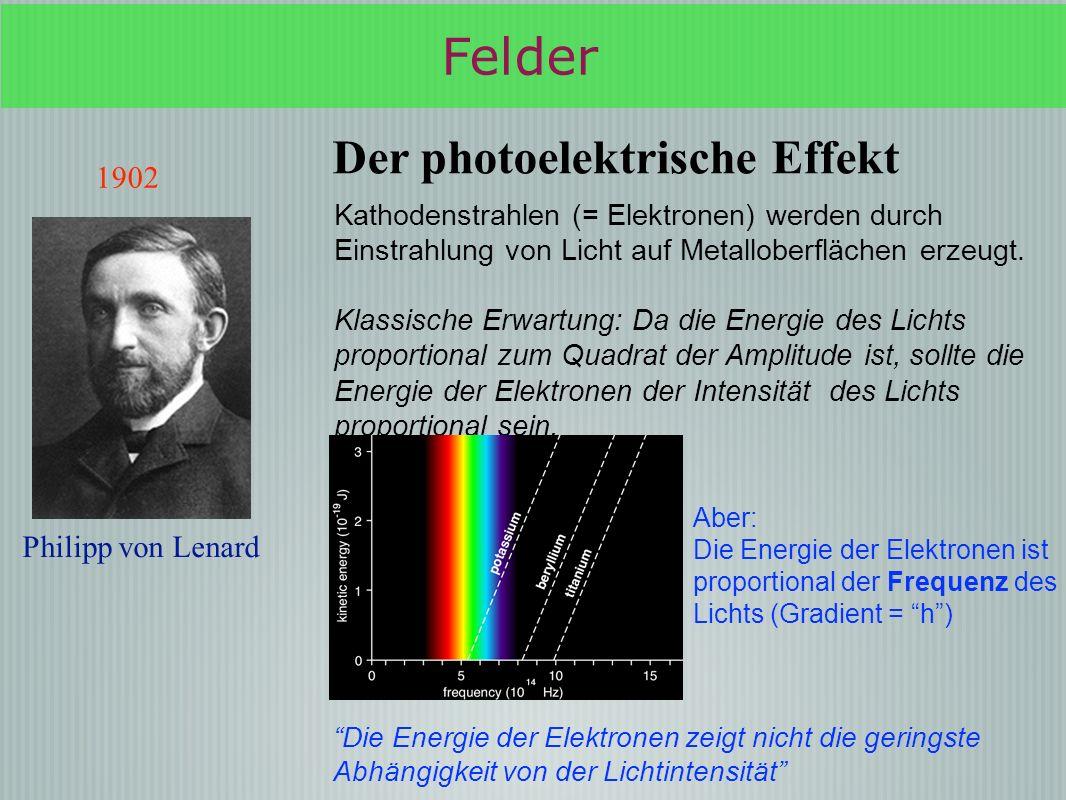 Felder Der photoelektrische Effekt 1902 Philipp von Lenard