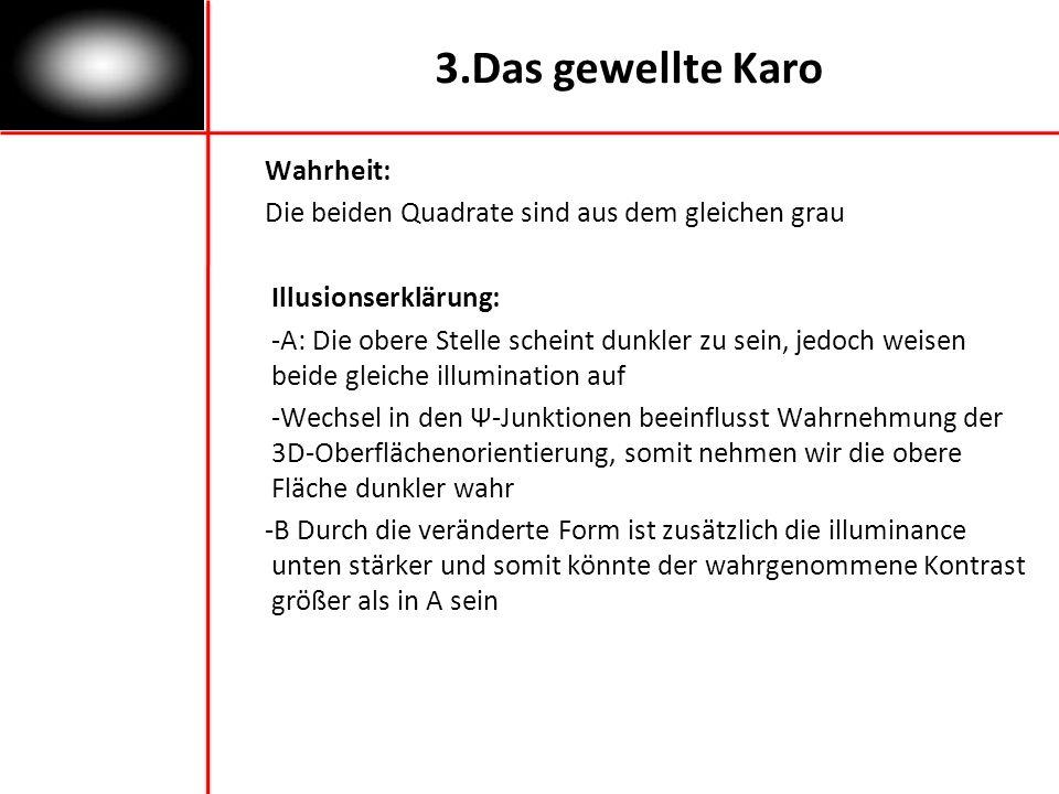 3.Das gewellte Karo Wahrheit: