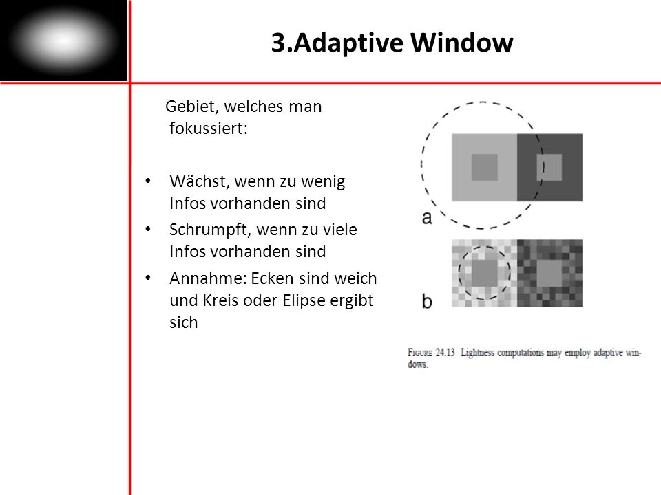 3.Adaptive Window Gebiet, welches man fokussiert:
