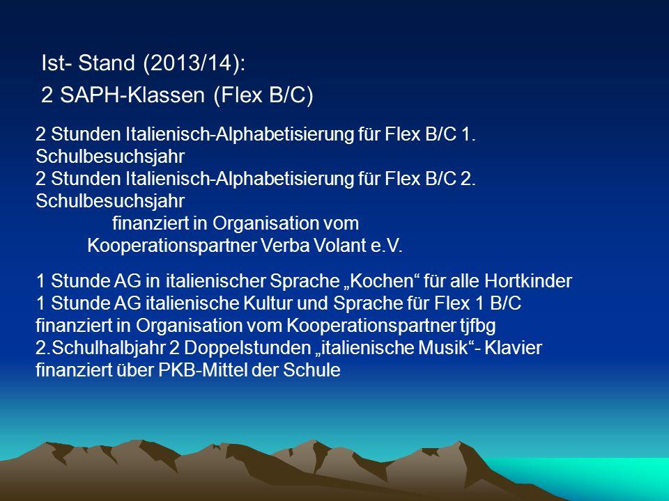 2 SAPH-Klassen (Flex B/C)
