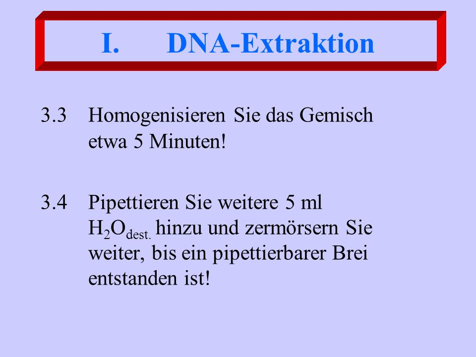 DNA-Extraktion 3.3 Homogenisieren Sie das Gemisch etwa 5 Minuten!