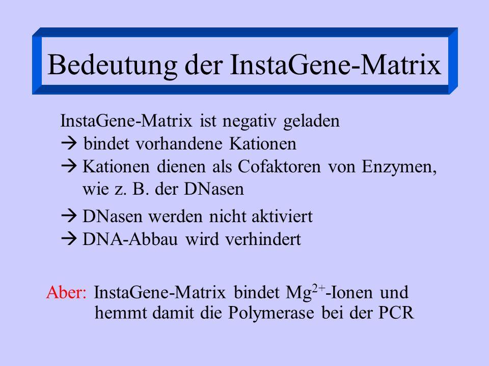 Bedeutung der InstaGene-Matrix