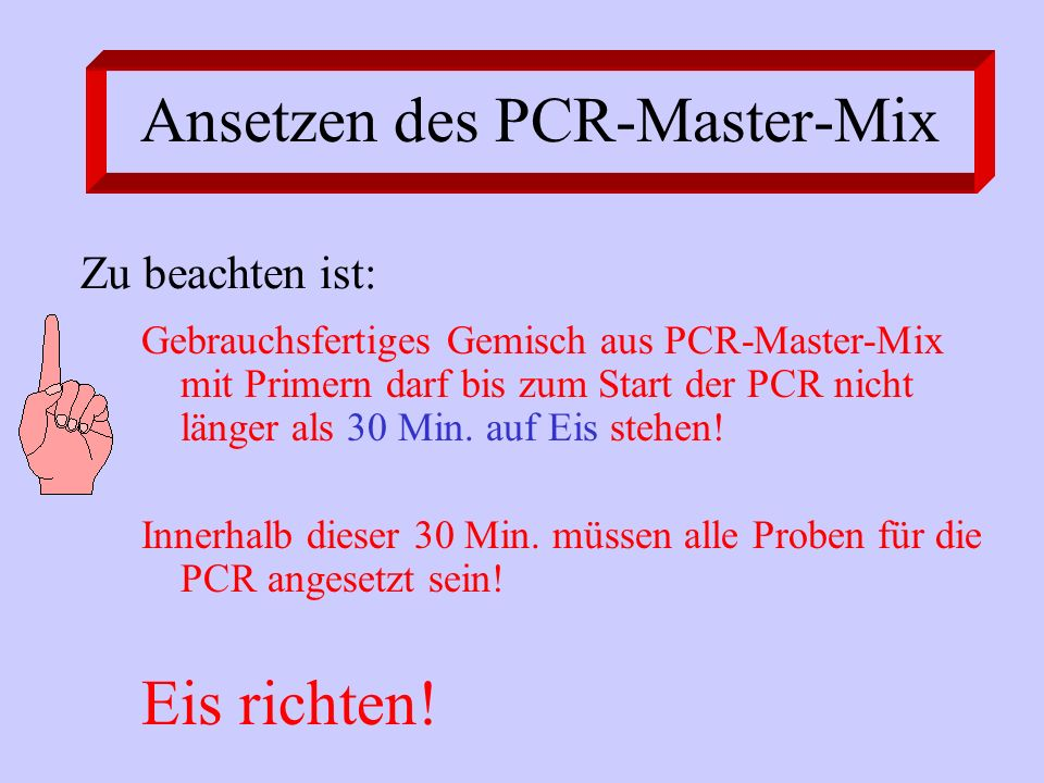 Ansetzen des PCR-Master-Mix