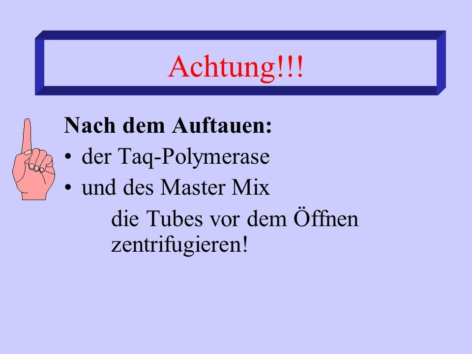 Achtung!!! Nach dem Auftauen: der Taq-Polymerase und des Master Mix