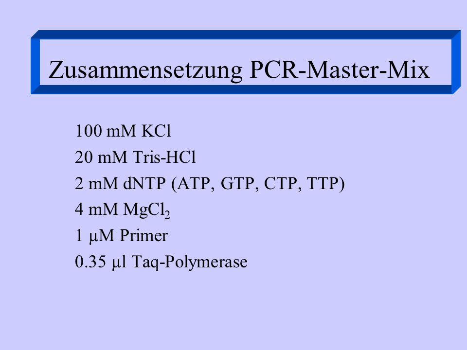 Zusammensetzung PCR-Master-Mix