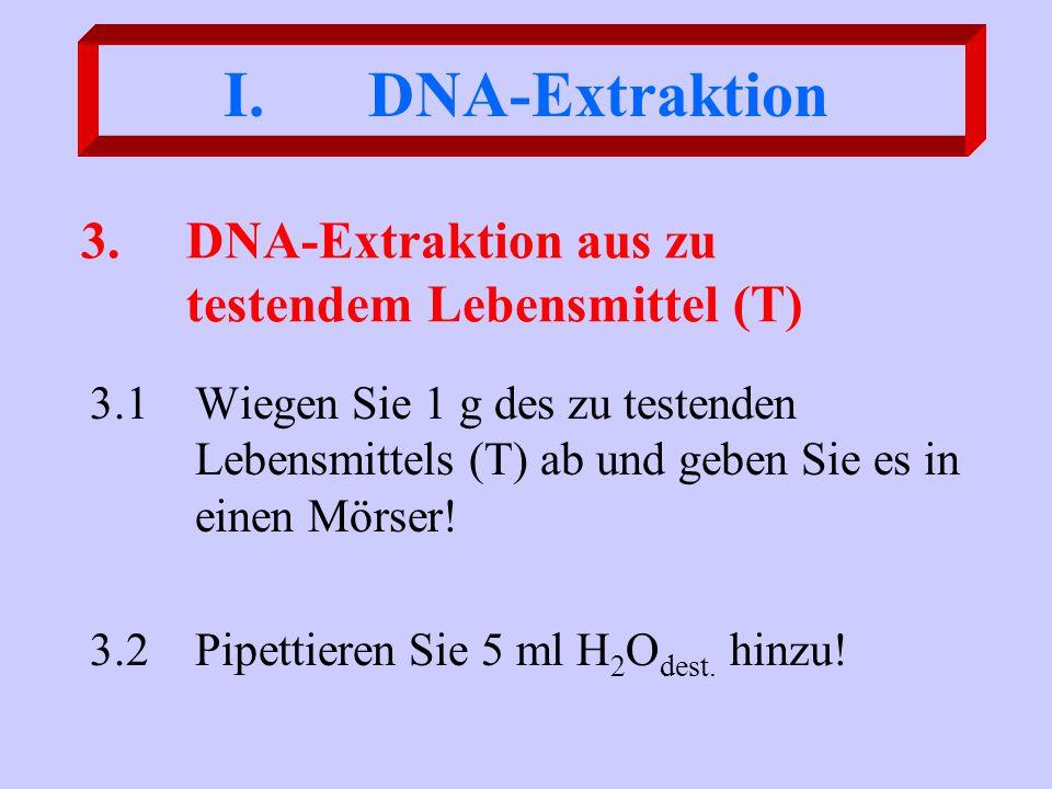 3. DNA-Extraktion aus zu testendem Lebensmittel (T)
