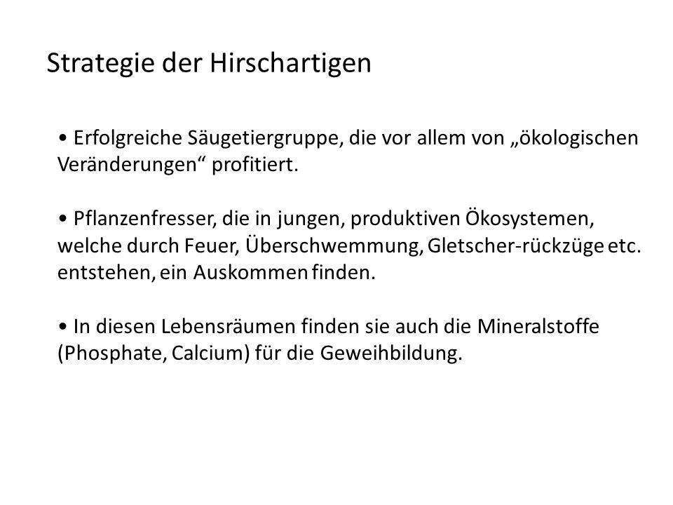 Strategie der Hirschartigen