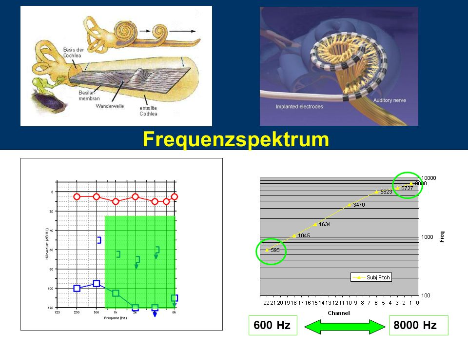 Frequenzspektrum 600 Hz 8000 Hz