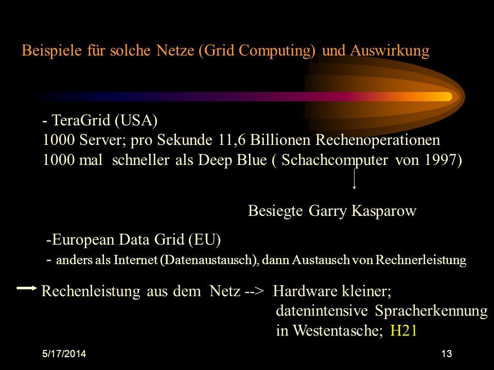 Beispiele für solche Netze (Grid Computing) und Auswirkung