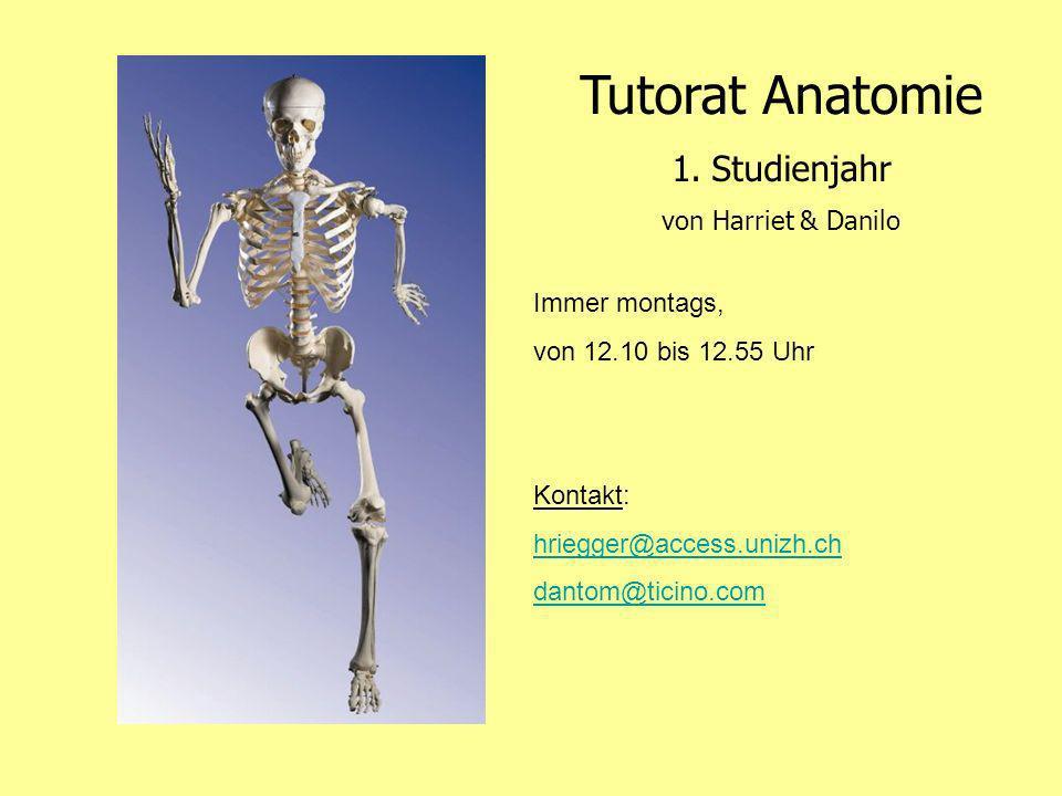 Tutorat Anatomie Studienjahr von Harriet & Danilo Immer montags,