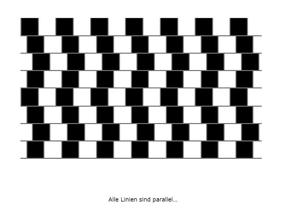 Alle Linien sind parallel…