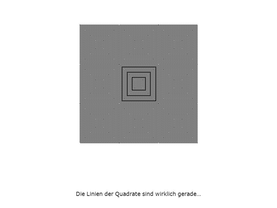 Die Linien der Quadrate sind wirklich gerade…