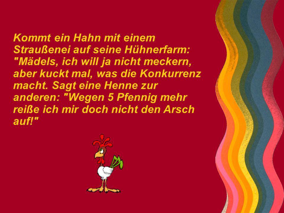 Kommt ein Hahn mit einem Straußenei auf seine Hühnerfarm: Mädels, ich will ja nicht meckern, aber kuckt mal, was die Konkurrenz macht.