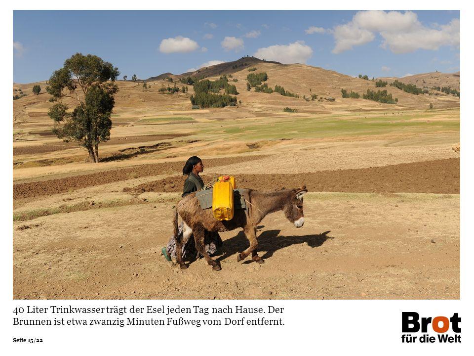 40 Liter Trinkwasser trägt der Esel jeden Tag nach Hause