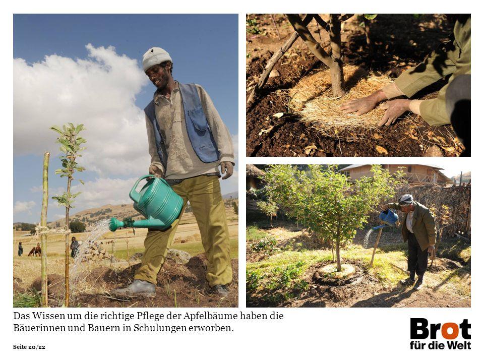 Das Wissen um die richtige Pflege der Apfelbäume haben die Bäuerinnen und Bauern in Schulungen erworben.