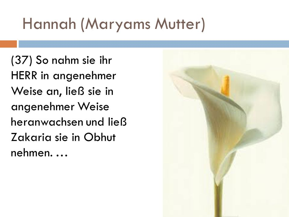 Hannah (Maryams Mutter)
