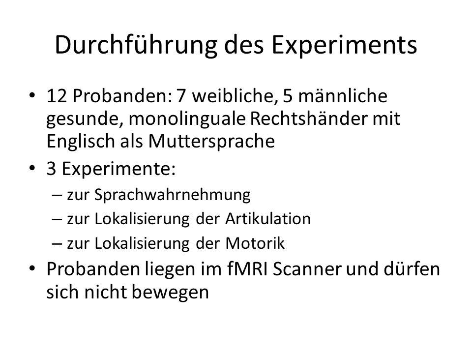 Durchführung des Experiments