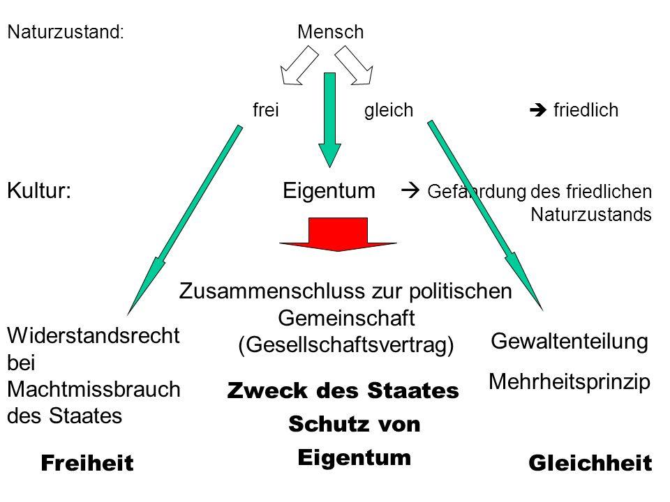 Zusammenschluss zur politischen Gemeinschaft (Gesellschaftsvertrag)