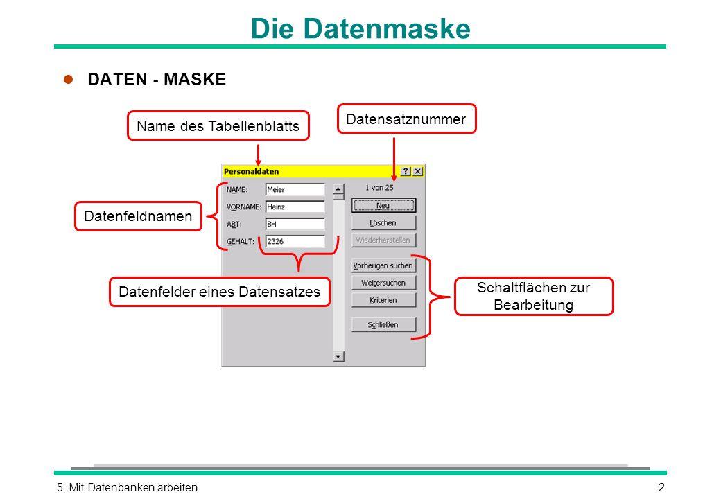 Die Datenmaske DATEN - MASKE Datensatznummer Name des Tabellenblatts