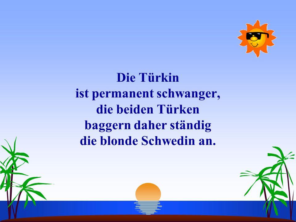 Die Türkin ist permanent schwanger, die beiden Türken baggern daher ständig die blonde Schwedin an.