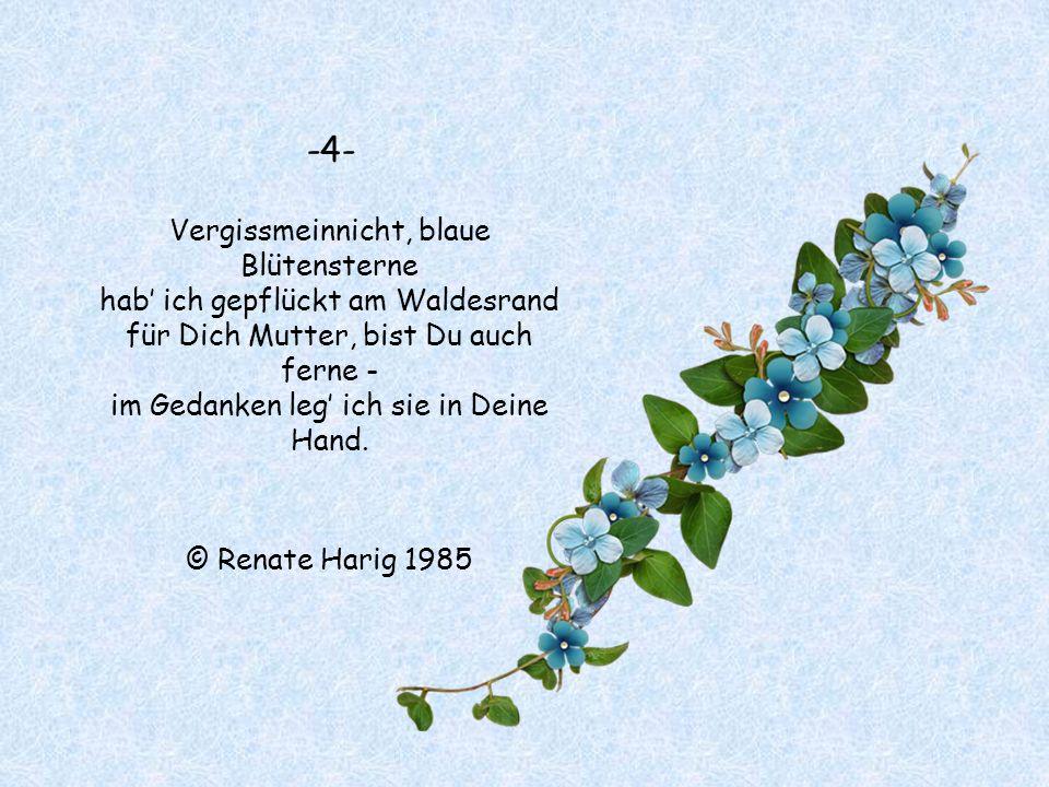 -4- Vergissmeinnicht, blaue Blütensterne hab' ich gepflückt am Waldesrand für Dich Mutter, bist Du auch ferne - im Gedanken leg' ich sie in Deine Hand.