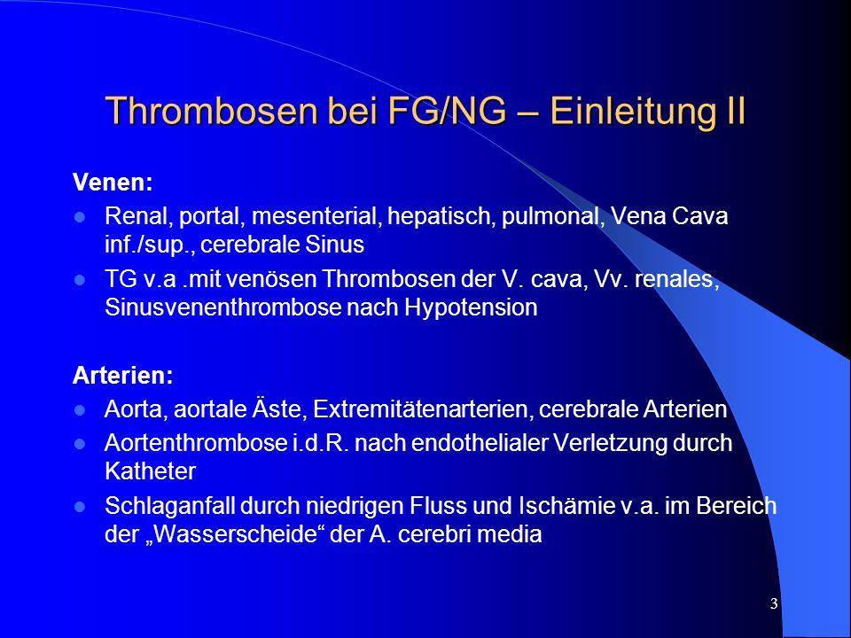 Thrombosen bei FG/NG – Einleitung II