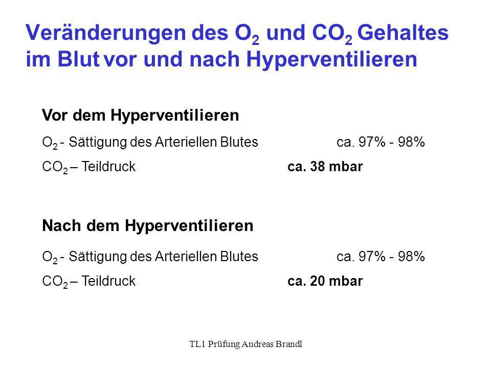 TL1 Prüfung Andreas Brandl