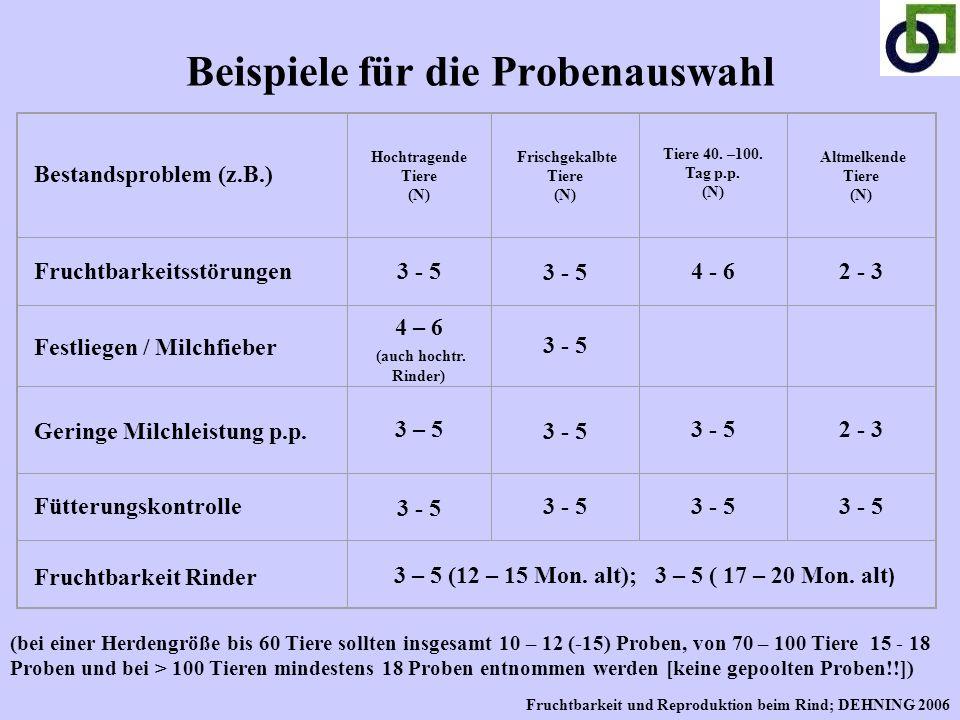 Beispiele für die Probenauswahl