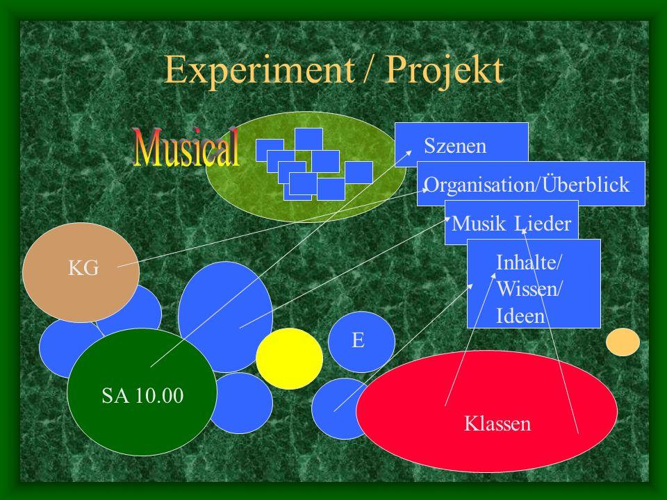 Experiment / Projekt Musical Szenen Organisation/Überblick