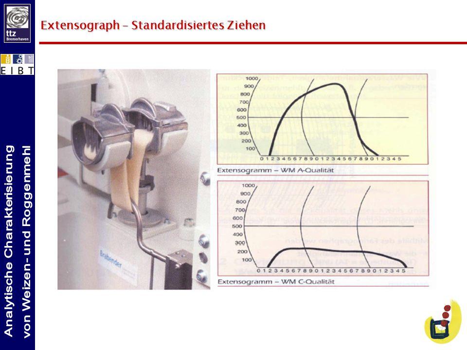 Extensograph – Standardisiertes Ziehen
