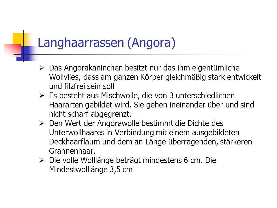 Langhaarrassen (Angora)