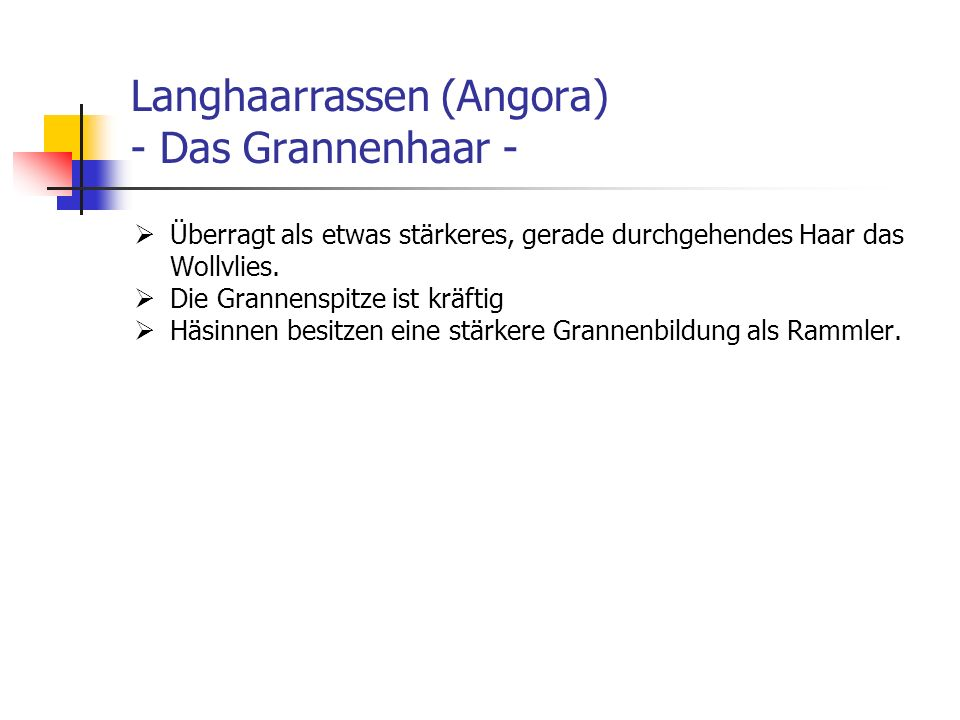 Langhaarrassen (Angora) - Das Grannenhaar -