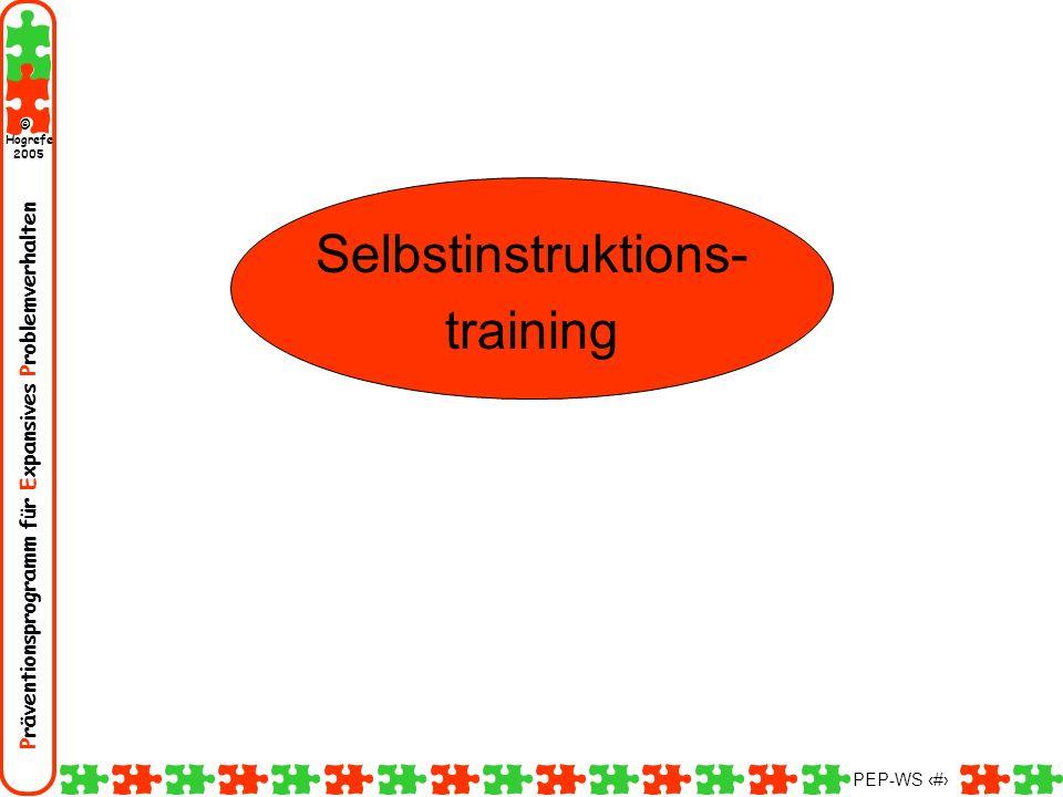 Selbstinstruktions- training