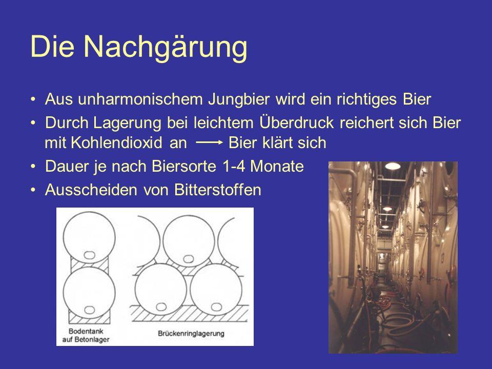 Die Nachgärung Aus unharmonischem Jungbier wird ein richtiges Bier