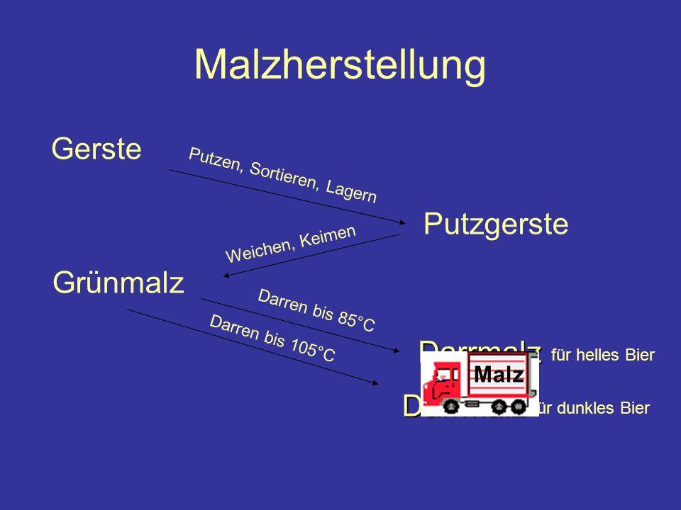 Malzherstellung Gerste Putzgerste Grünmalz Darrmalz Darrmalz Malz