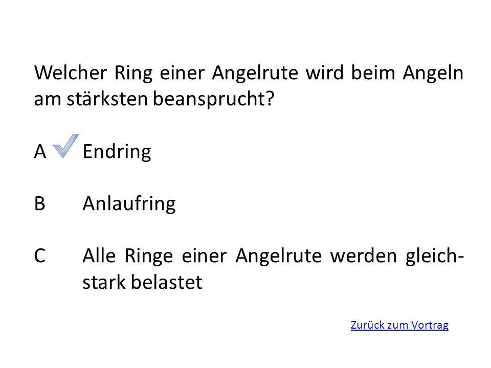 C Alle Ringe einer Angelrute werden gleich- stark belastet