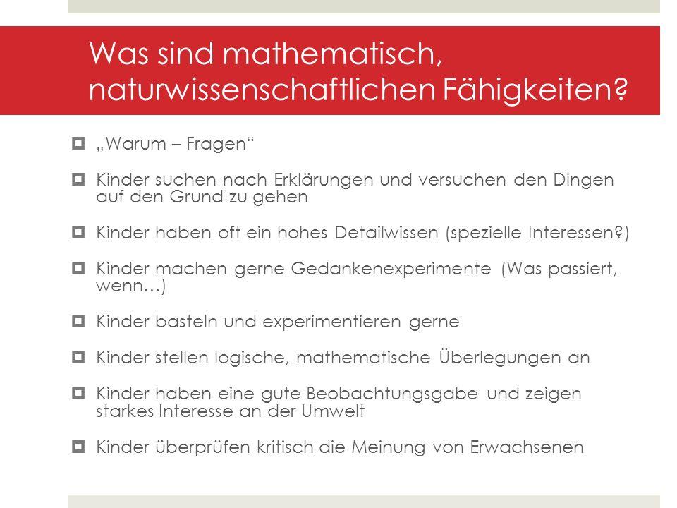 Was sind mathematisch, naturwissenschaftlichen Fähigkeiten